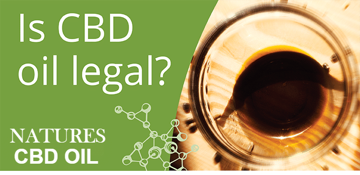 is-cbd-legal-to-buy