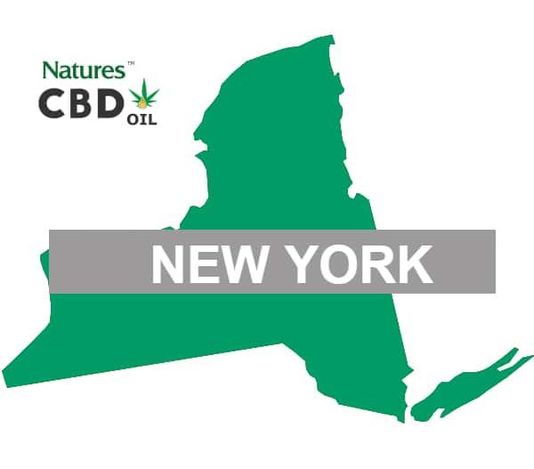 cbd oil for sale in NY